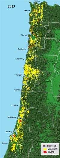 2013 Aerial Survey