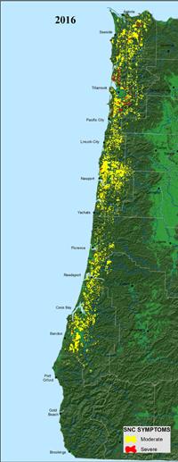 2016 Aerial Survey